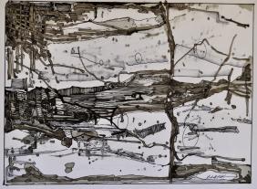 13. Landscape Contrived, Ink on Paper, 2016